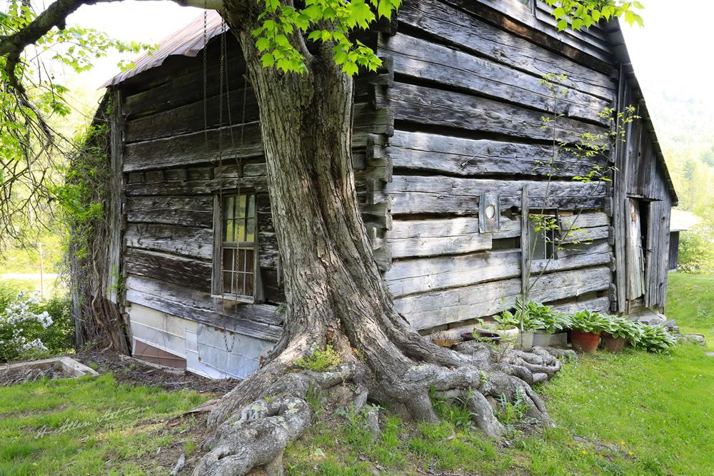 The Wallin Log House-Barn II, Big Laurel Road, Madison County, NC