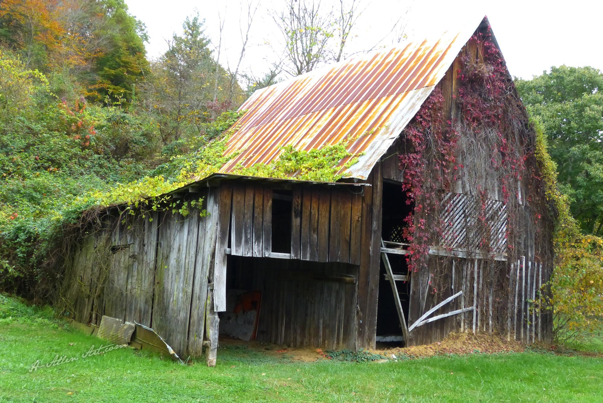 Fall Colors Barn, Windswept Drive, Madison County Barn, NC