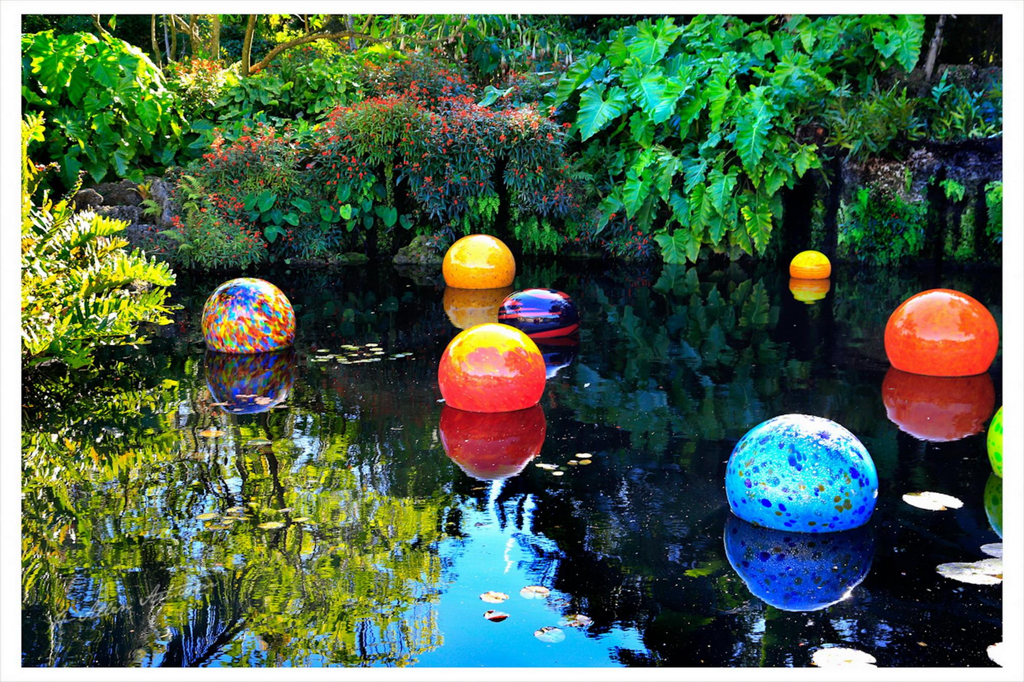 Chihuly Floats, Fairchild Gardens, Coral Gables, FL