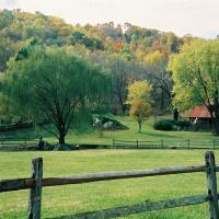 Wooden Fence, Shenandoah Valley, Little Washington,  VA