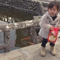 """Koi"" Little Girl"